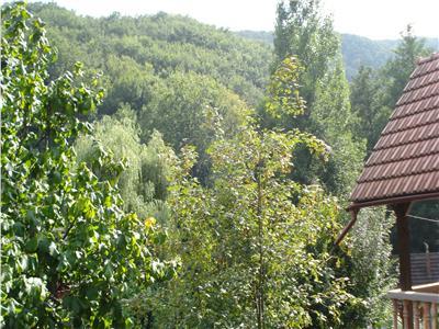 Cabana in Padurea Neagra