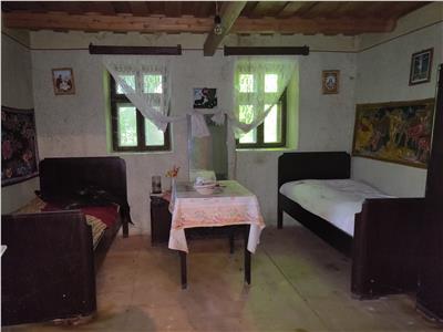 Casa cu teren in Fancica